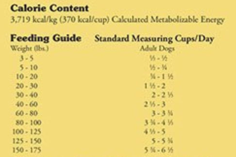 How To Make Your Labrador Muscular - Calorie Calculator.